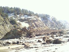 Snow at Cape Arago