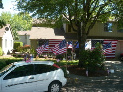 Frolicking Flags Flying On The 4th !!!!!