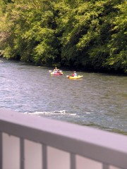 Fun in Sun on the Mckenzie River