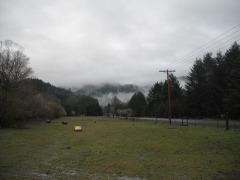 Stormy clouds in Alsea mountain