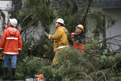 Pacific Power busy after storm damage