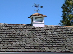 Old Weathervane