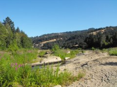Beautiful Umpqua River Area