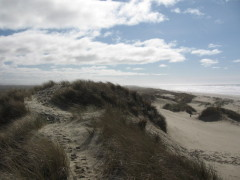 THE DUNES TRAIL, FLORENCE, OR