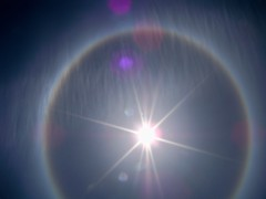Sun Halo in Oakridge