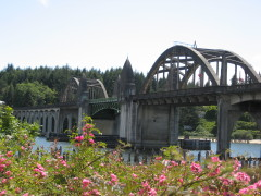 Flowers Siuslaw Bridge
