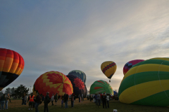 Hot Air Balloon Launch at Dawn