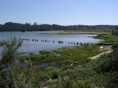 Florence Siuslaw River