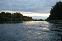 The Willamette River below Eugene