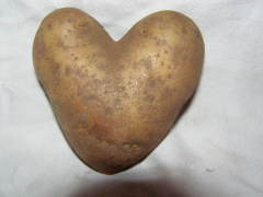 Heart Shaped Potatoe