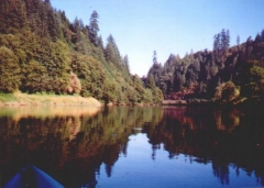 Siuslaw River by Kayak
