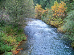 Blue river in the Fall