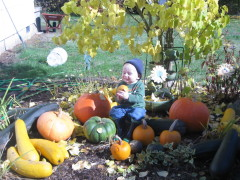 Hunter and Grandma's squash and pumpkins