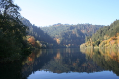 A Fall Drive Along the Umpqua River