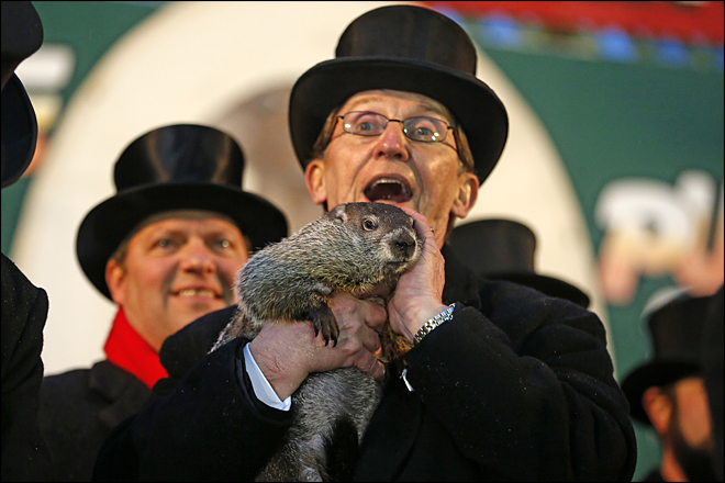Handlers: Punxsutawney Phil predicts longer winter