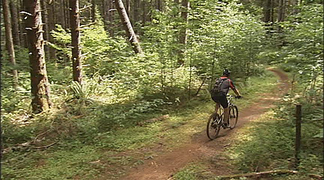 Alsea Falls opens to mountain bikers: 'This is a community trail system'