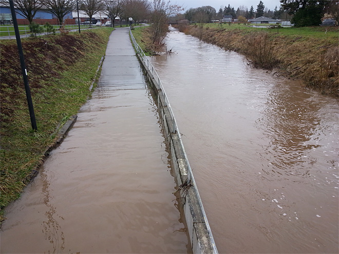Amazon Creek near Chambers Street in Eugene (2)