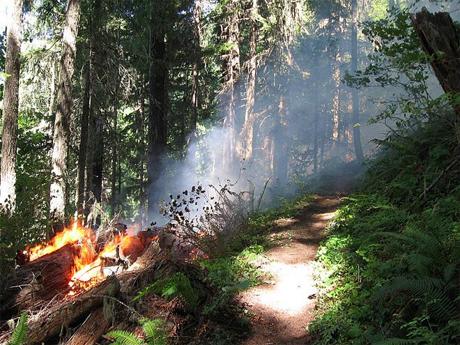 August fires on the Willamette National Forest