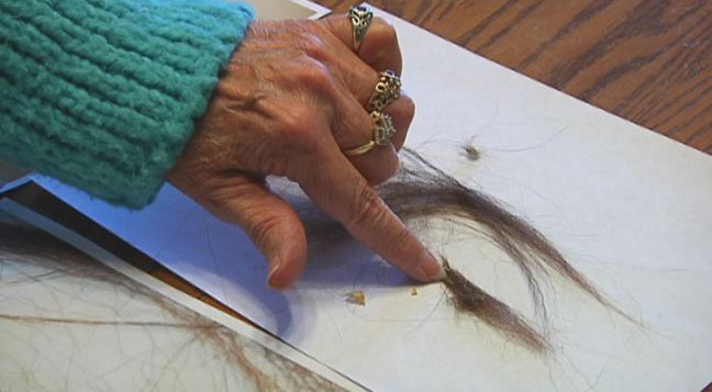 Bigfoot believer shares hairs