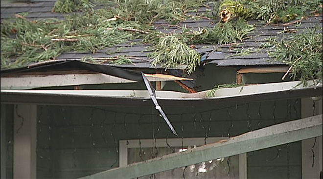 Broken limb damages roof