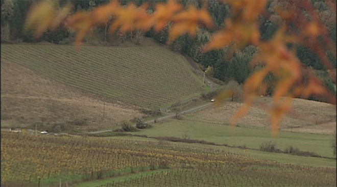 Busy weekend for Willamette Valley wine country 7