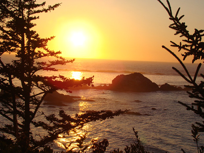 Cape Arago on September 12 by Eric Kohler (2)