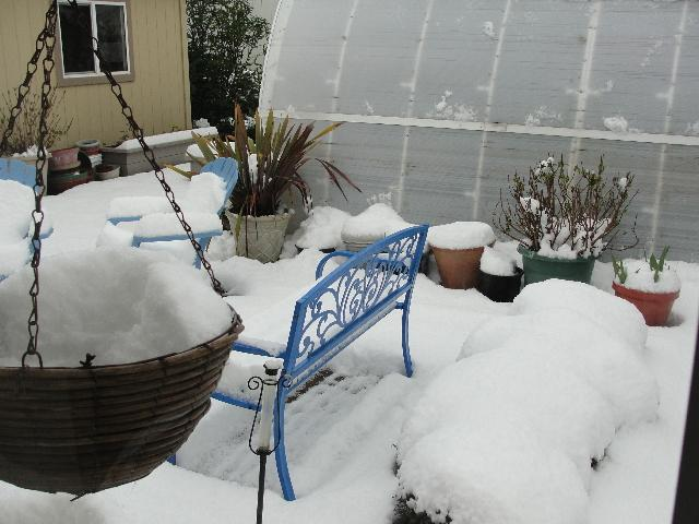 Colleen Curatolo photos of snow in Florence on March 13