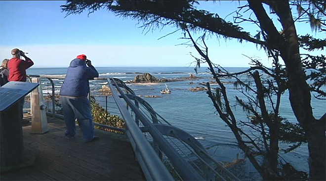 Crab boat gets stuck off Cape Arago (4)
