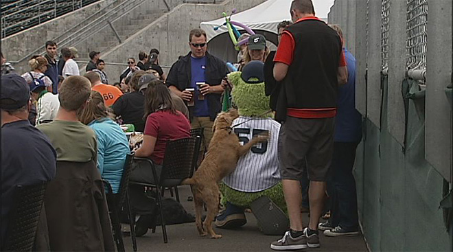 Dog Days at PK Park 2012 (2)