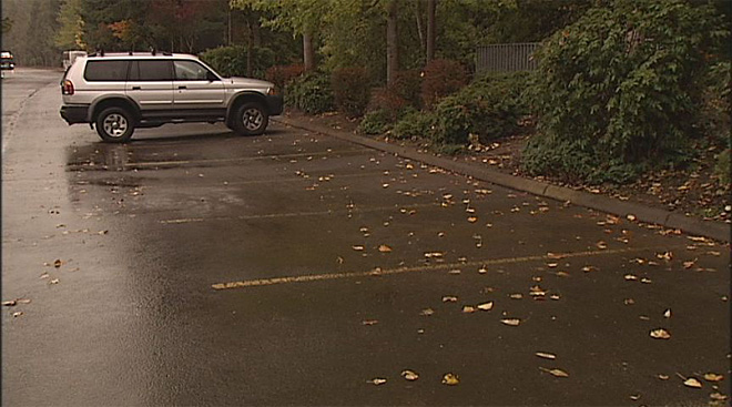 Dog and car stolen from mall parking lot (3)