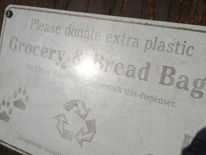 Doggy bags and the plastic ban (5)