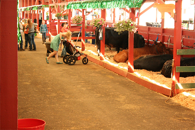 Douglas County Fair Day 2 (6)