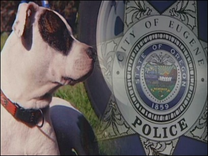 Police detective shoots and kills dog