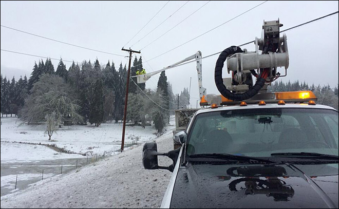 Freezing rain knocks down trees, power lines across Lane County