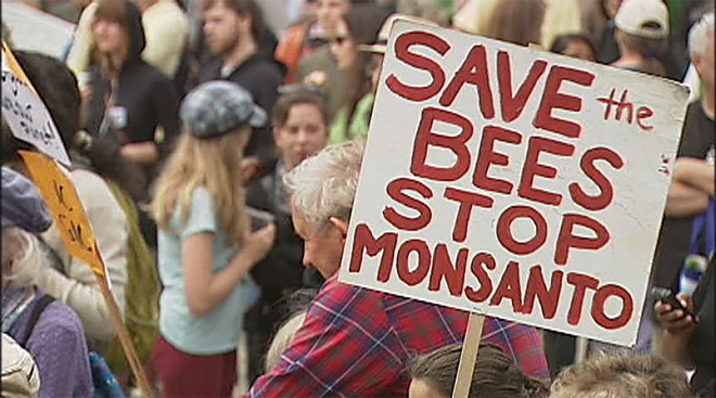 March Against Monsanto: 'We have the right to know what's in our food'