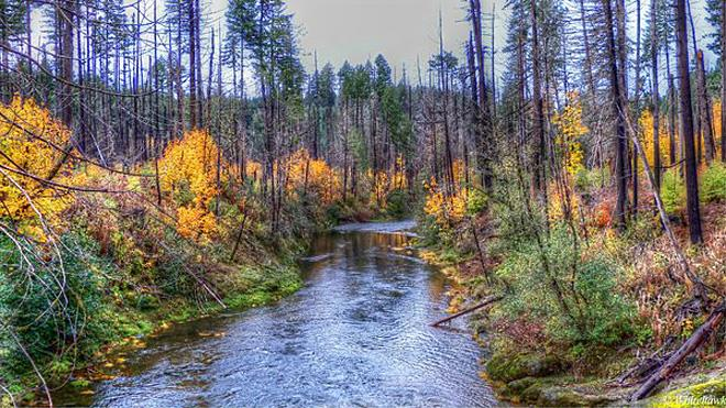 Fall Creek in Autumn - whitehawk