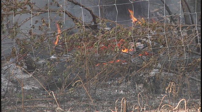Fire near McKenzie Bridge sparked by downed powerline  07