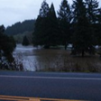 Flooding west of Marcola Road (3)