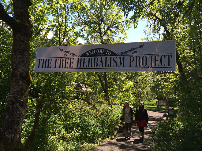 Free Herbalism Project at Mount Pisgah Arboretum