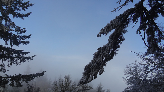 Freezing fog on Ridgeline Trail on January 22 2013 (8)