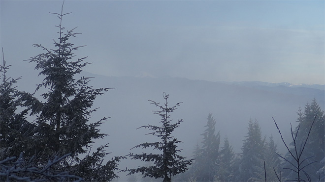 Freezing fog on Ridgeline Trail on January 22 2013 (9)