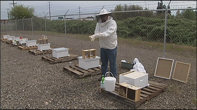GloryBee hosts 38th annual weekend on saving hives05