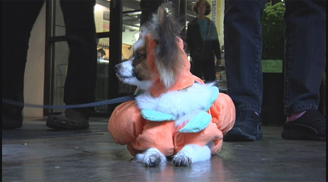 Happy Howloween 2012 (4)