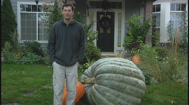 Half-ton squash: 'I'll probably leave it here for decoration'