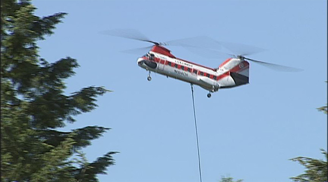 Helicopter hoists trees from park project in south Eugene