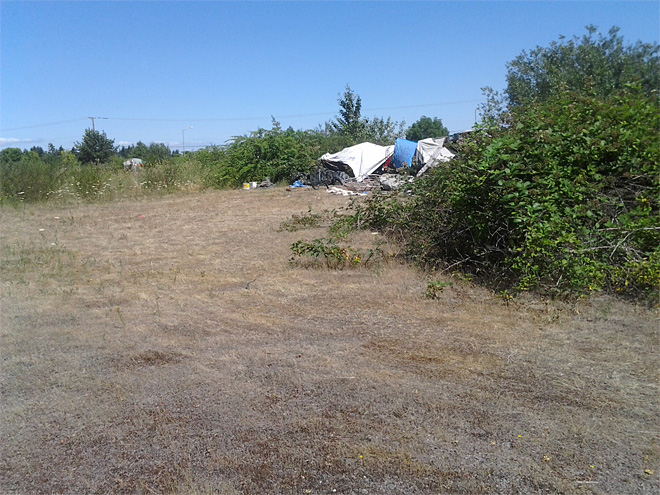 Illegal camping on city land July 2013 (3)
