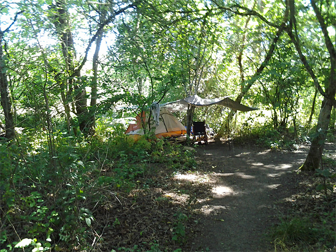 Illegal camping on city land July 2013 (6)