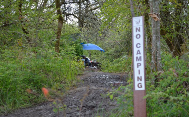 Illegal camp in West Eugene Wetlands