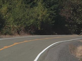 Woman found injured, unconscious on side of road