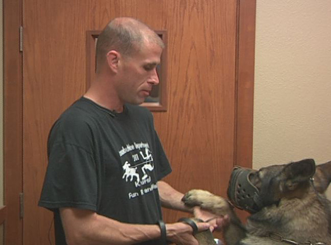K9 Helix gets a root canal (4)